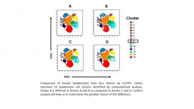 Comparison of human lymphocytes from four donors by CyTOF®.